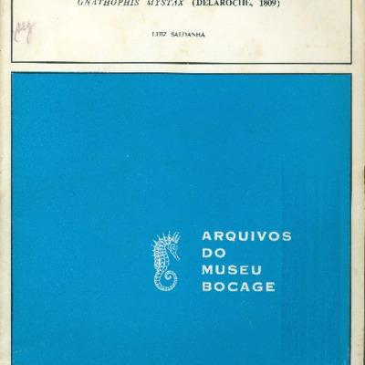 Un poisson anguilliforme (Congridae) nouveau pour la faune du Portugal: Gnathophis mystax (Delaroche, 1809)